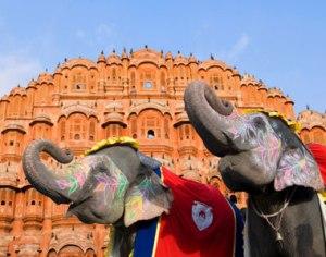 elephants-palace